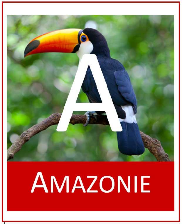 Logo-Amazonie