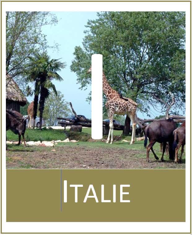 Logo-Italie